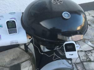 Grillthermometer froggit Smoke Max 2 Testbericht